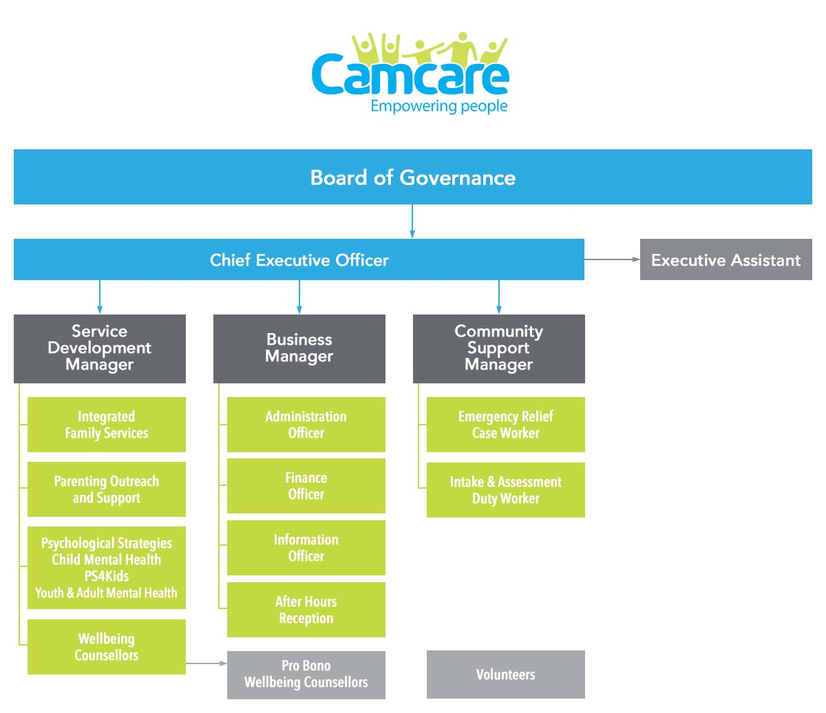 Camcare - Organisational Chart